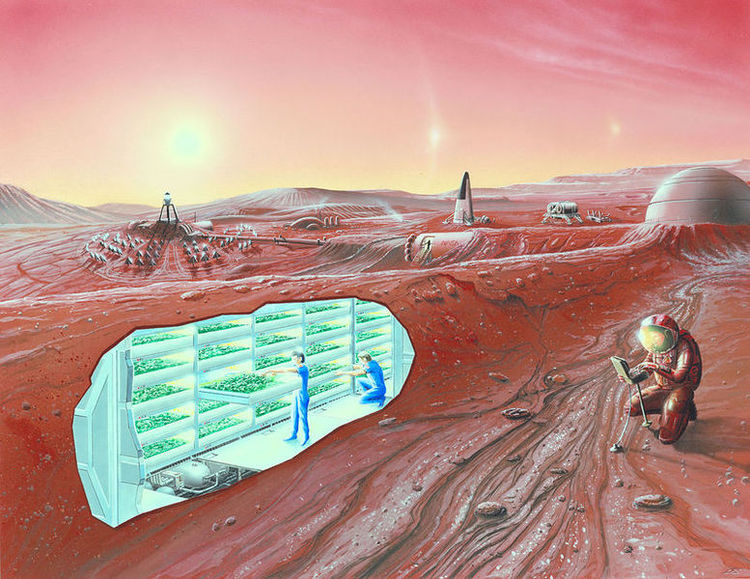 Engineers have created bricks out of simulated Martian soil. The bricks are stronger than steel-reinforced concrete and have low permeability, suggesting that Martian soil could be used to build a colony.