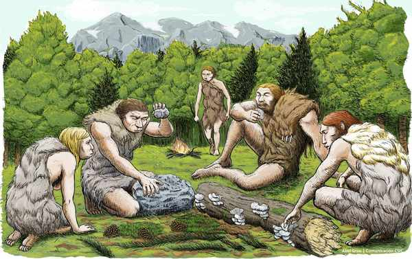 A Rare Glimpse of Neanderthal Family Groups