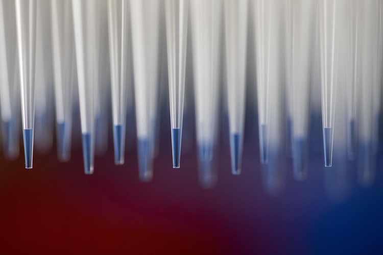 Scientists Eye a Universal Flu Vaccine