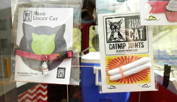 Is It Unethical to Give Catnip to Your Cat? | RealClearScience