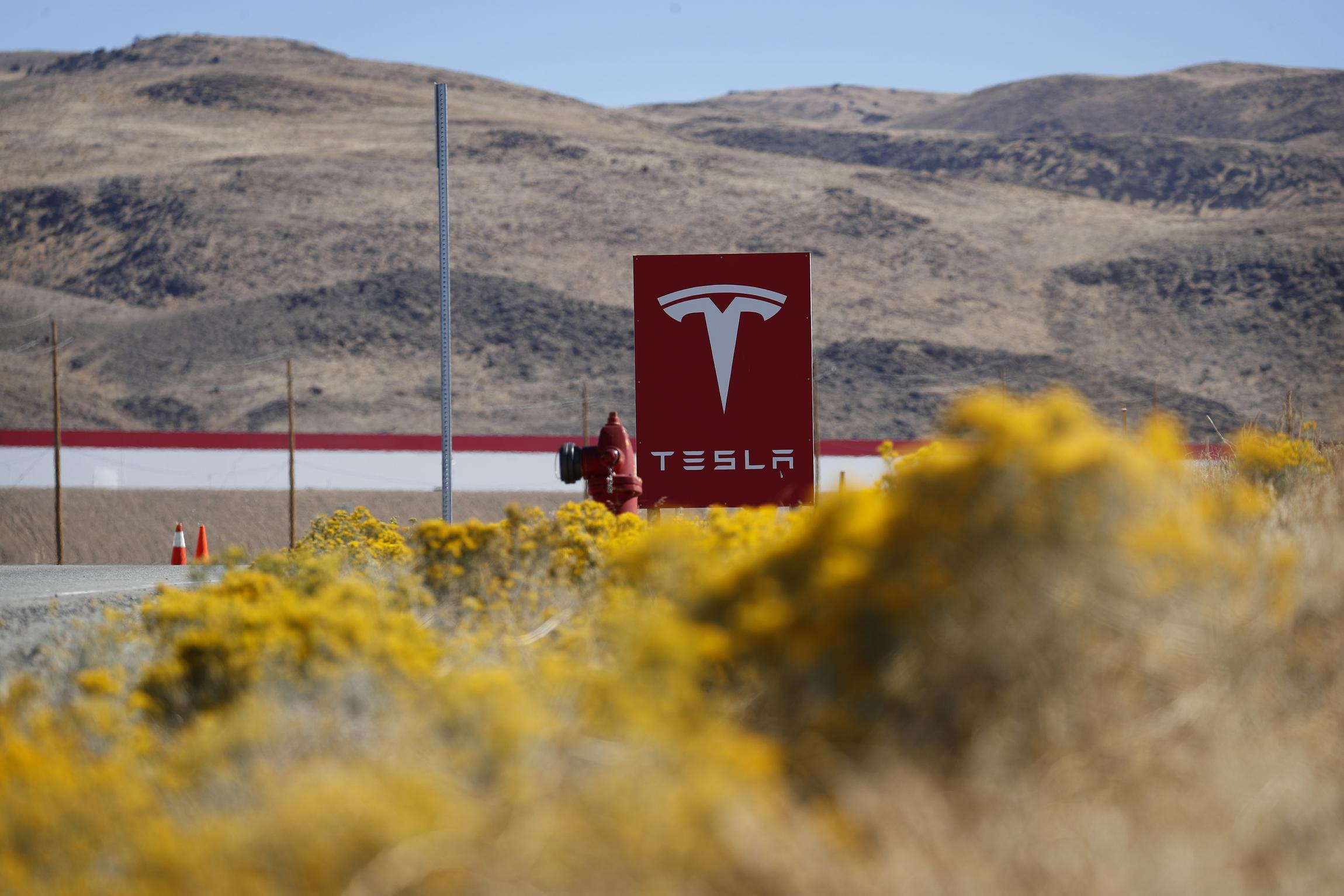 Time to Zap Tesla's Subsidy Shopping