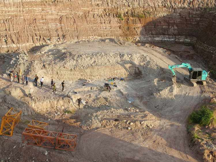 'Mindblowing' Haul of Fossils Unearthed in China