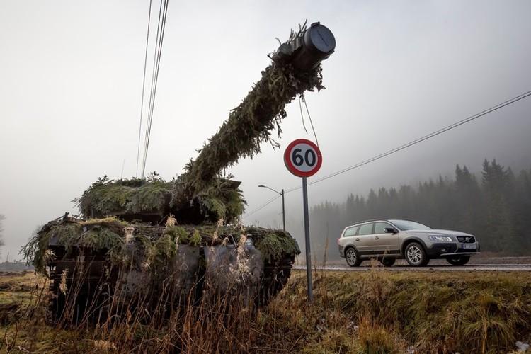 NATO's Stoltenberg Paradox