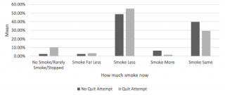To Vape or Not To Vape? Preliminary Results from a Qualitative Survey of Smokers