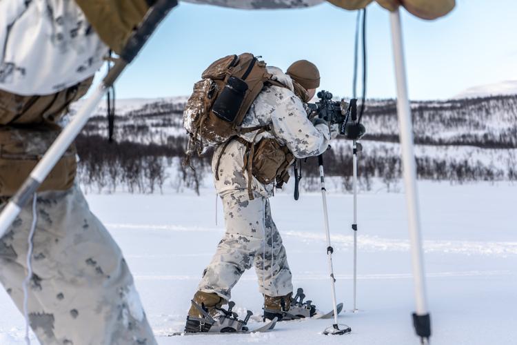 Deconstructing the Pentagon's Arctic Strategies