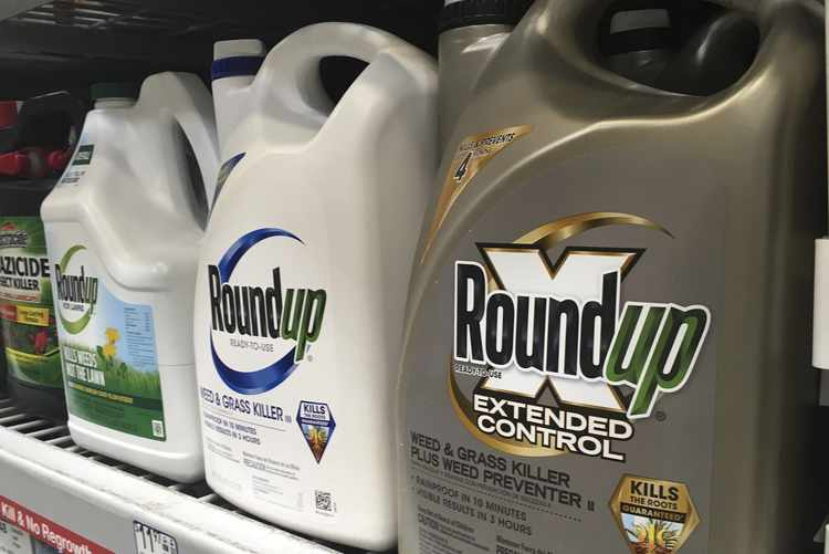 CA Doctors Join Monsanto Against Roundup Cancer Verdict
