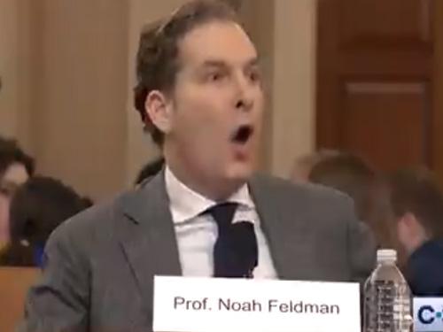 """Harvard Law Professor Noah Feldman: """"Trump Has Committed ..."""