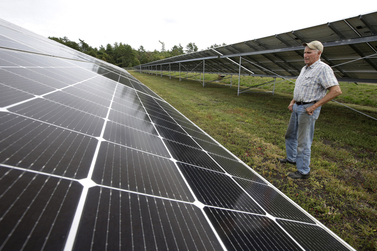 It's Time for Congress to Phase Out Solar and Wind Tax Credits