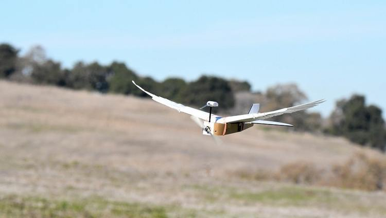 Robot Pigeon Promises New Generation of Flying Machines