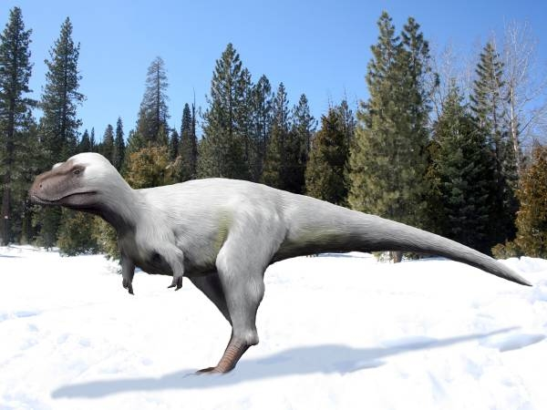 The Fluffy Dinosaurs That Dwelled in the Arctic