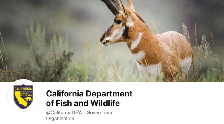 Facebook/California Department of Fish & Wildlife