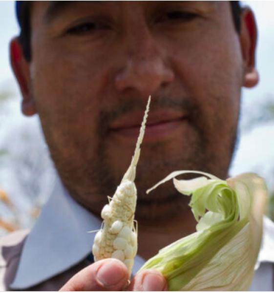 World Food Program USA/Francisco Fion